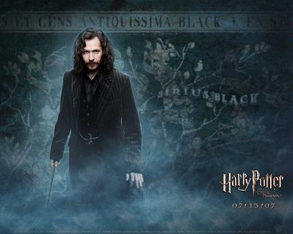 Klicken Sie auf die Grafik für eine größere Ansicht  Name:Harry Potter Wallpaper 4.jpg Hits:873 Größe:108,0 KB ID:10055