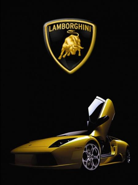 Klicken Sie auf die Grafik für eine größere Ansicht  Name:Lamborghini.jpg Hits:2490 Größe:46,7 KB ID:15381