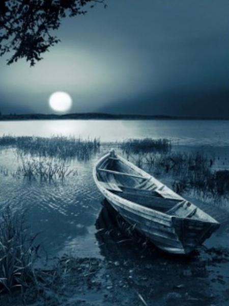 Klicken Sie auf die Grafik für eine größere Ansicht  Name:Moon_Night.jpg Hits:626 Größe:76,8 KB ID:16357