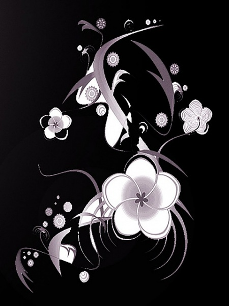 Klicken Sie auf die Grafik für eine größere Ansicht  Name:White_Flower.jpg Hits:233 Größe:72,1 KB ID:16507