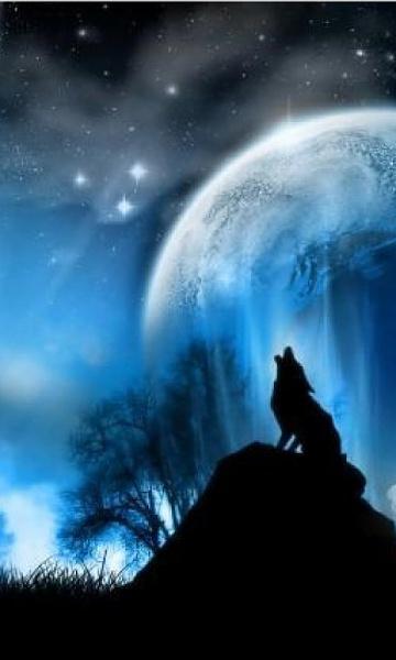 Klicken Sie auf die Grafik für eine größere Ansicht  Name:Wolf.jpg Hits:488 Größe:42,4 KB ID:18216