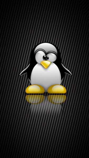 Klicken Sie auf die Grafik für eine größere Ansicht  Name:Linux.jpg Hits:913 Größe:88,4 KB ID:18924