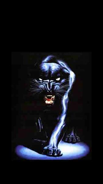Klicken Sie auf die Grafik für eine größere Ansicht  Name:Panther.jpg Hits:699 Größe:20,1 KB ID:18927
