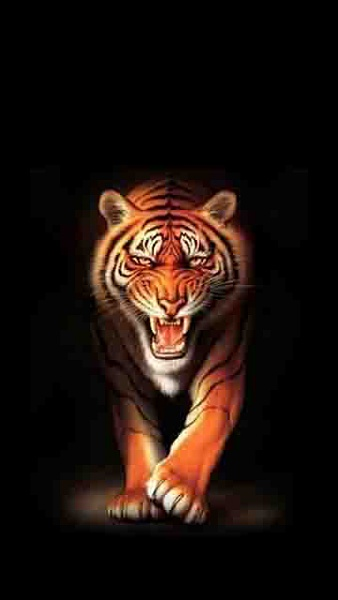 Klicken Sie auf die Grafik für eine größere Ansicht  Name:Tiger.jpg Hits:1681 Größe:20,4 KB ID:18934