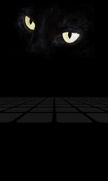 Klicken Sie auf die Grafik für eine größere Ansicht  Name:Cat Eyes.jpg Hits:784 Größe:18,6 KB ID:19071