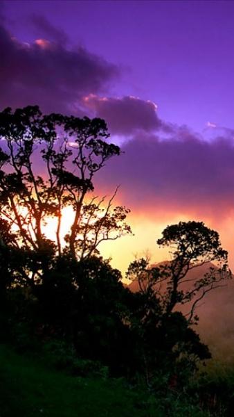 Klicken Sie auf die Grafik für eine größere Ansicht  Name:Hawaii.jpg Hits:336 Größe:70,3 KB ID:19151