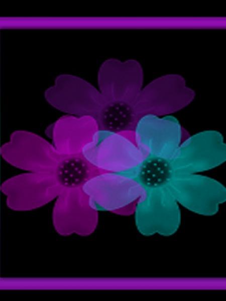 Klicken Sie auf die Grafik für eine größere Ansicht  Name:Abstract Flowers.jpg Hits:190 Größe:37,5 KB ID:20498