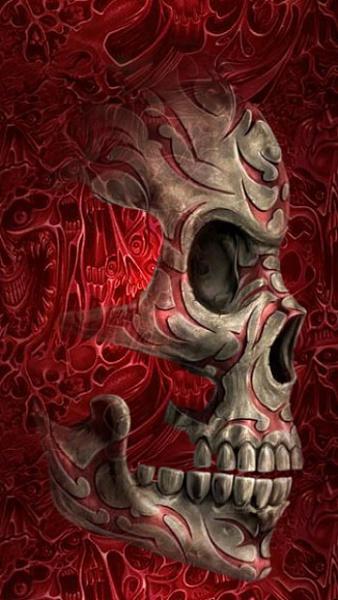 Klicken Sie auf die Grafik für eine größere Ansicht  Name:Red Skull.jpg Hits:388 Größe:95,1 KB ID:20674