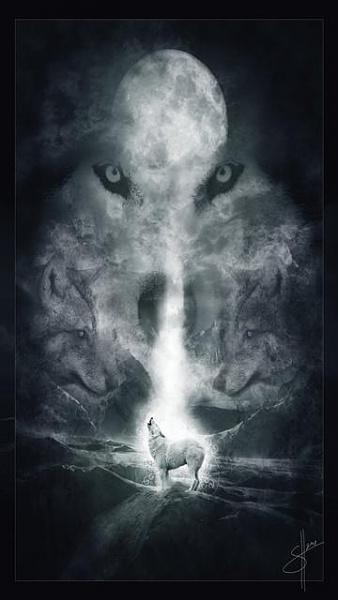 Klicken Sie auf die Grafik für eine größere Ansicht  Name:Wolf.jpg Hits:696 Größe:25,1 KB ID:20686