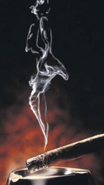 Klicken Sie auf die Grafik für eine größere Ansicht  Name:Smoke.jpg Hits:292 Größe:46,8 KB ID:21633