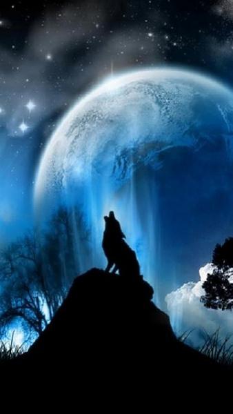 Klicken Sie auf die Grafik für eine größere Ansicht  Name:Wolf.jpg Hits:1170 Größe:46,9 KB ID:21636