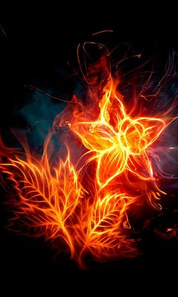 Klicken Sie auf die Grafik für eine größere Ansicht  Name:Feuer Bilder [A4P] (4).jpg Hits:407 Größe:109,2 KB ID:31896