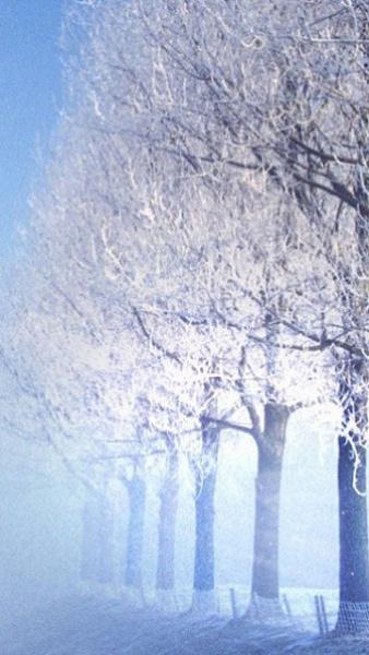 Klicken Sie auf die Grafik für eine größere Ansicht  Name:Winter Logos [A4P] (1).jpg Hits:379 Größe:91,2 KB ID:32555