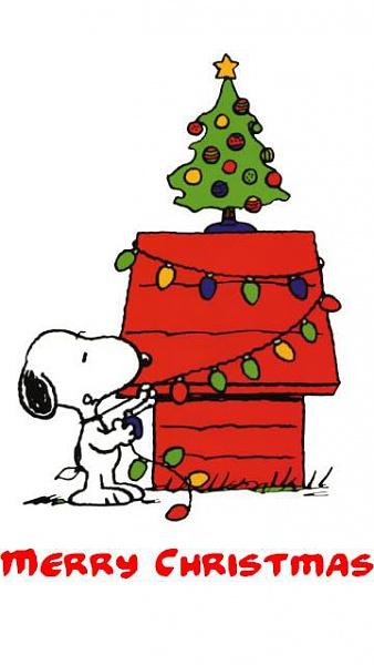 Klicken Sie auf die Grafik für eine größere Ansicht  Name:Weihnachts Bilder [A4P] (9).jpg Hits:762 Größe:26,8 KB ID:32573