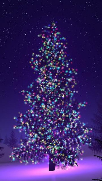 Klicken Sie auf die Grafik für eine größere Ansicht  Name:Weihnachts Bilder [A4P] (10).jpg Hits:7176 Größe:39,0 KB ID:32574
