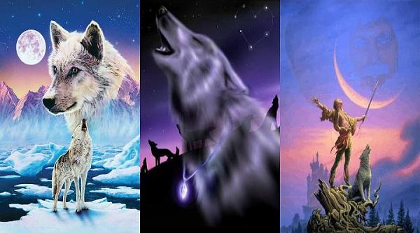 Klicken Sie auf die Grafik für eine größere Ansicht  Name:Wolf.jpg Hits:4521 Größe:44,2 KB ID:33175