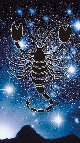 Klicken Sie auf die Grafik für eine größere Ansicht  Name:SZ_Skorpion.jpg Hits:812 Größe:282,6 KB ID:33840