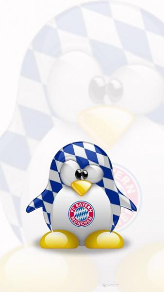 Klicken Sie auf die Grafik für eine größere Ansicht  Name:FC Bayern München Bilder (1).jpg Hits:1478 Größe:35,5 KB ID:34592