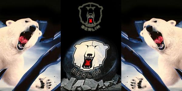 Klicken Sie auf die Grafik für eine größere Ansicht  Name:Eisbären Berlin Wallpaper.jpg Hits:69257 Größe:217,3 KB ID:36235