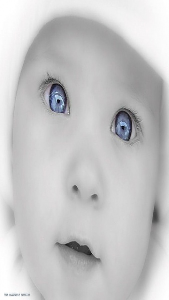 Klicken Sie auf die Grafik für eine größere Ansicht  Name:Baby.jpg Hits:97 Größe:35,1 KB ID:36974