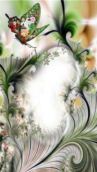 Klicken Sie auf die Grafik für eine größere Ansicht  Name:Butterfly.jpg Hits:426 Größe:129,4 KB ID:40592