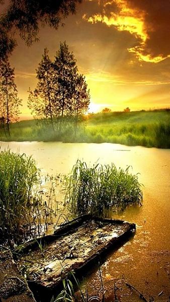 Klicken Sie auf die Grafik für eine größere Ansicht  Name:Nokia N8 Hintergrundbilder (12).jpg Hits:568 Größe:121,8 KB ID:42428