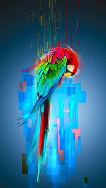 Klicken Sie auf die Grafik für eine größere Ansicht  Name:Nokia C7 Hintergrundbilder (8).jpg Hits:1035 Größe:100,0 KB ID:42894