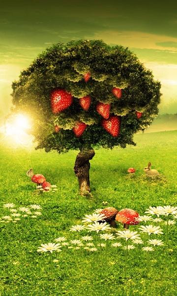 Klicken Sie auf die Grafik für eine größere Ansicht  Name:strawberry.jpg Hits:534 Größe:149,0 KB ID:43120