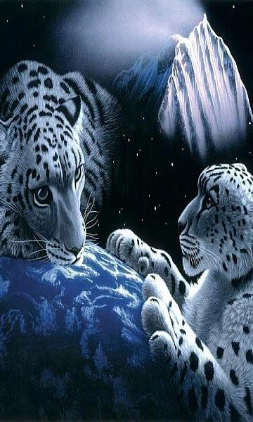 Klicken Sie auf die Grafik für eine größere Ansicht  Name:samsung-wave-white-tiger.jpg Hits:496 Größe:108,6 KB ID:43176