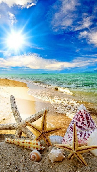 Klicken Sie auf die Grafik für eine größere Ansicht  Name:naturelandscape-summer-beach-iphone-6-plus-sommer-wallpaper.jpg Hits:11426 Größe:80,3 KB ID:51540