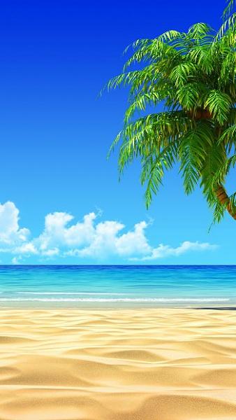 Klicken Sie auf die Grafik für eine größere Ansicht  Name:Tropical-Beach-Coconut-Tree-Illustration-Sommer-Wallpaper.jpg Hits:8032 Größe:66,5 KB ID:51545
