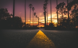 Name:  kalifornien-los-angeles-straße-palmen-wallpaper-4k.jpg