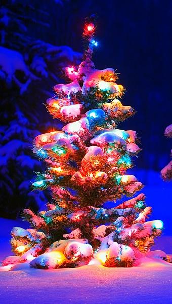 Klicken Sie auf die Grafik für eine größere Ansicht  Name:Handy Wallpaper Weihnachten 9.jpg Hits:1613 Größe:448,3 KB ID:55443