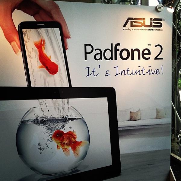PadFone 2 jetzt auch im freien Handel erh�ltlich
