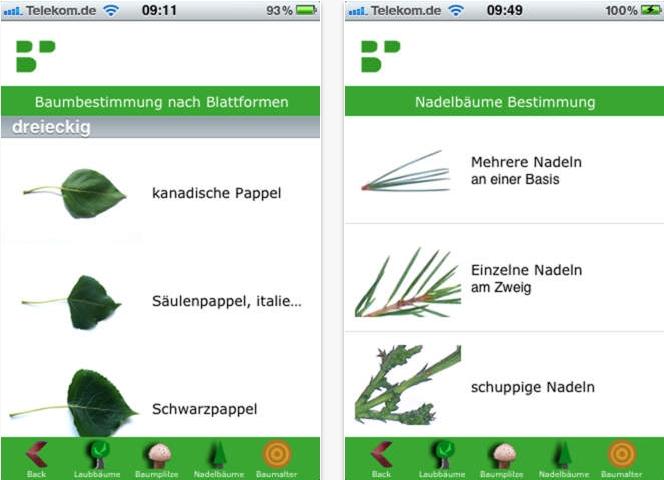 Baumbestimmung mit der Baumportal App f�r Android und iOS