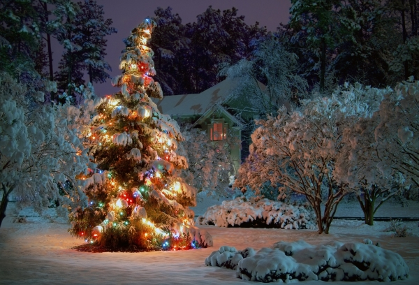 Weihnachtsaktion 2014: Kostenlose Apps bei Amazon zum Download